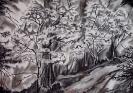 Kohlezeichnung Unterholz 2